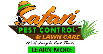 Safari Pest Control