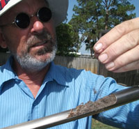 Rick Orr examining a soil sample in Pinellas County