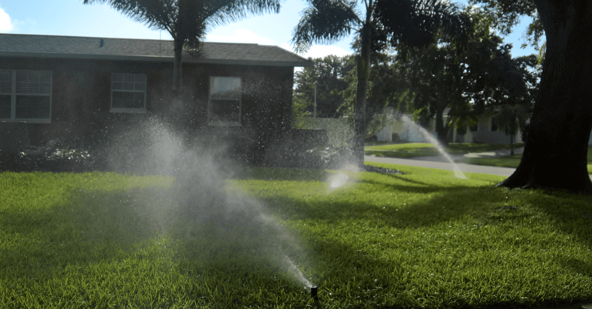 Evening Watering is Best for St Augustine Lawns