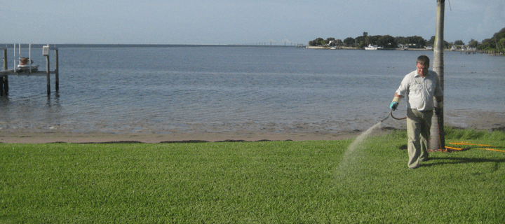 Rain Washes Away Fertilizer Into Local Waters Myth