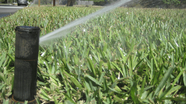 Irrigation of St Augustine Lawn
