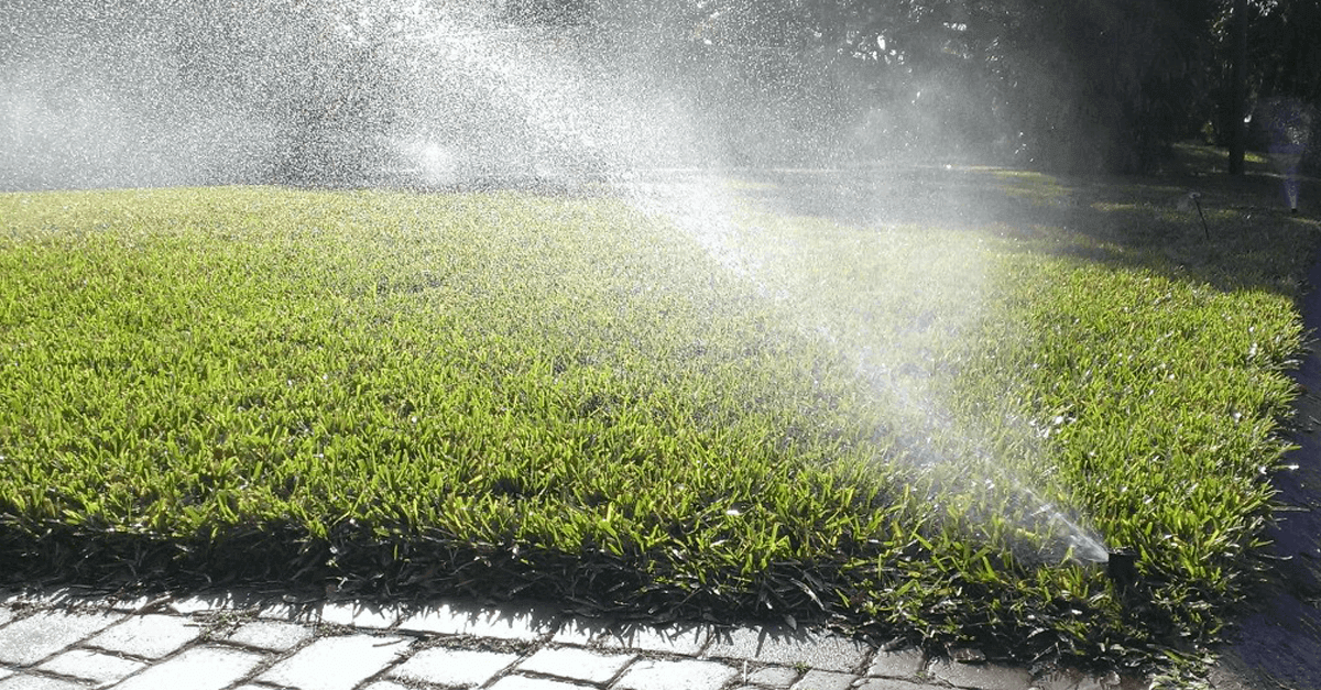 A good irrigation system will produce a good looking lawn