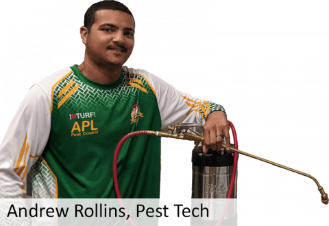 Andrew Rollins, Lead Pest Control Tech at APL Pest Control
