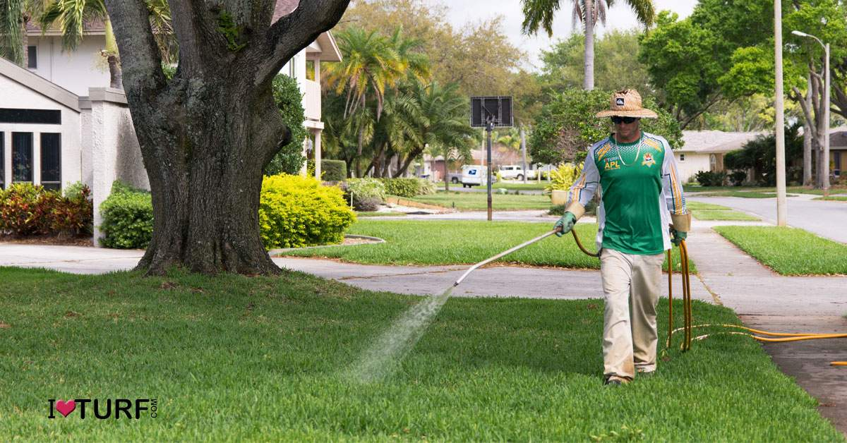 APL Pest Control Tech spraying a St Augustine Lawn