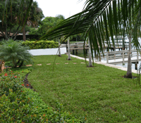 Planting a Lawn with St Augustine Sod