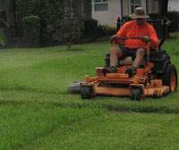 Man Mowing a St Augustine Lawn