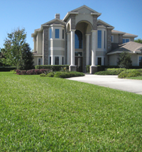 Why A St Augustine Lawn is a Good for You and Good for the Urban Environment