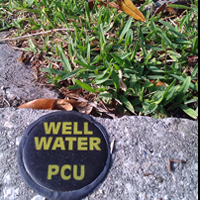 Soil and Water: Why Irrigation is Mandatory in Pinellas
