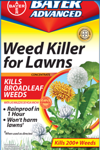 A Weed Free Lawn is Not Sold in a Bottle
